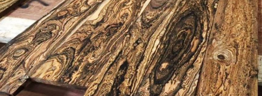 các loại gỗ quý hiếm trên thế giới