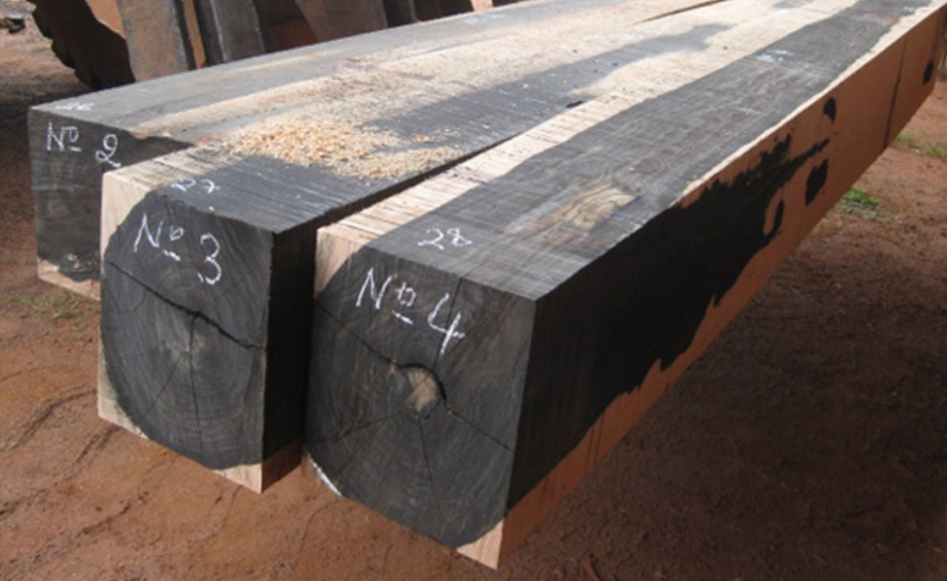 Hình ảnh gỗ sưa đen