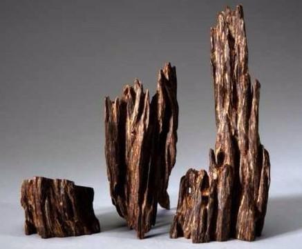 Top 9 loại gỗ quý hiếm nhất trên thế giới 7