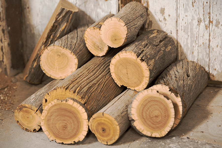 Đàn hương là một loại gỗ cực quý hiếm đã được Ấn Độ coi là cây hoàng gia