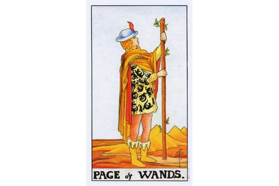 Ý nghĩa lá bài Page Of Wands trong Tarot theo chuẩn Rider Waite Smith 4