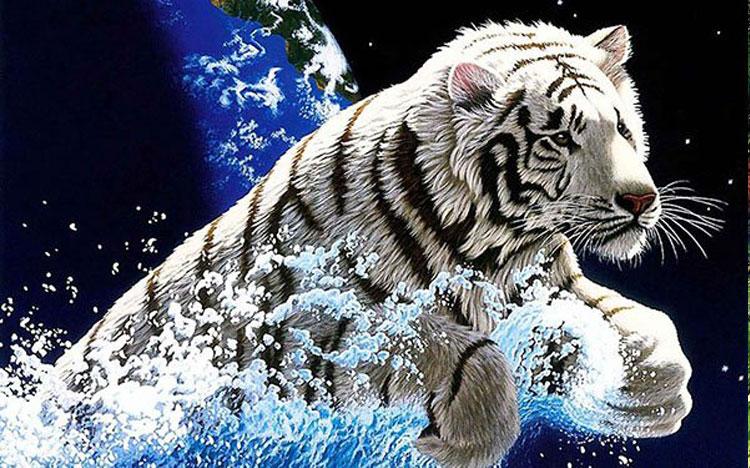 Ảnh đẹp 3d Hổ trắng vồ mồi