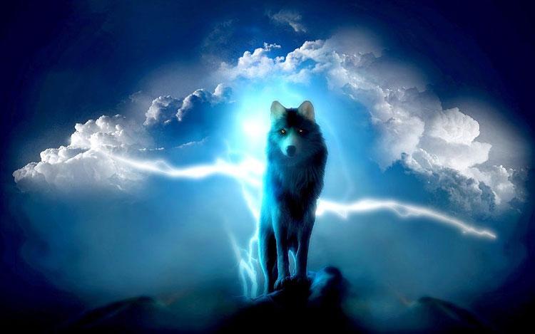 Hình ảnh đẹp 3D sói