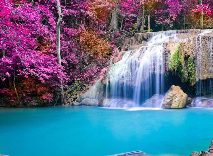 Hình ảnh 3d về thác nước và trăm hoa đua nở