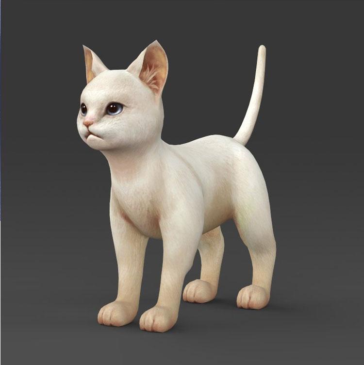 Hình ảnh mèo 3d