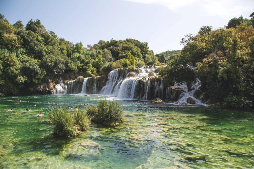 Hình nền rừng cây xanh và nước suối trong veo