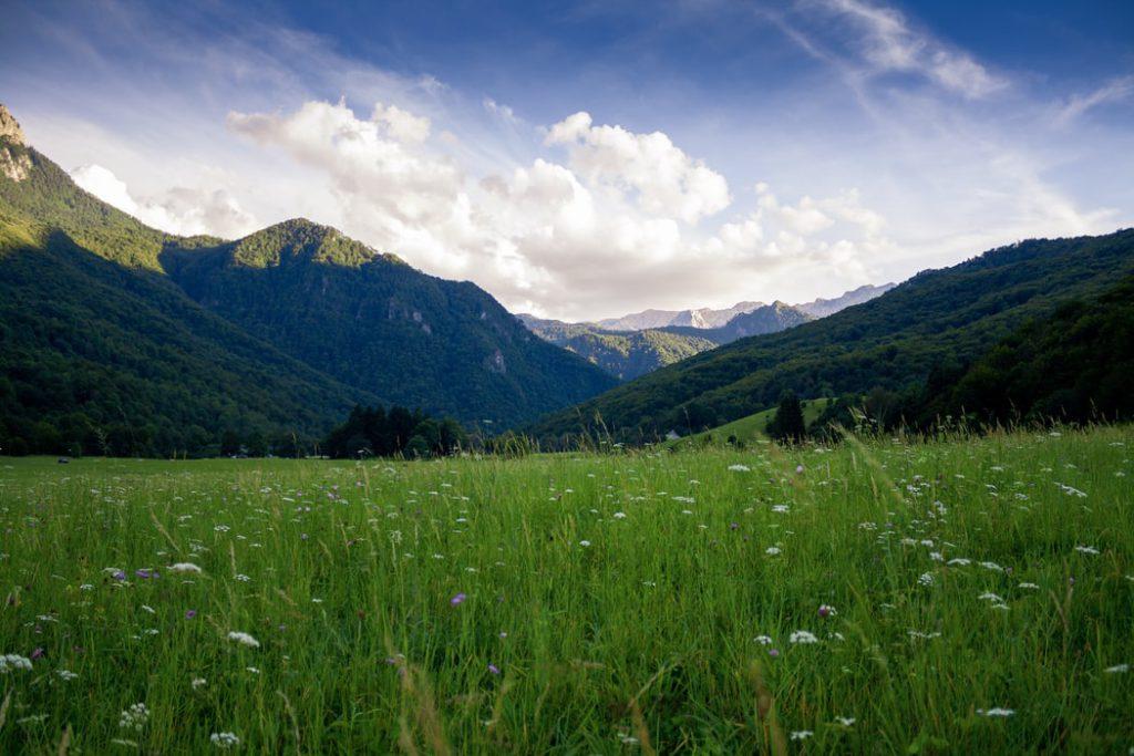 Hình nền thiên nhiên đồi cỏ xanh ngát