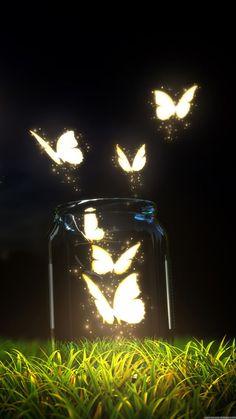 Hình nền điện thoại đẹp về hình bướm