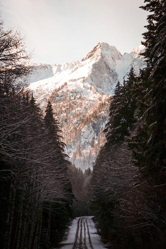 Hình nền iPhone cảnh đồi núi đẹp