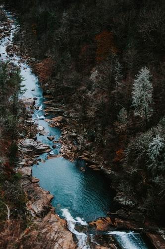 Hình nền iPhone 8, iPhone 8s, iPhone 8 Plus con sông và rừng cây xanh ngát siêu lãng mạng