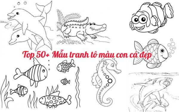 Các mẫu tranh tô màu con cá đẹp