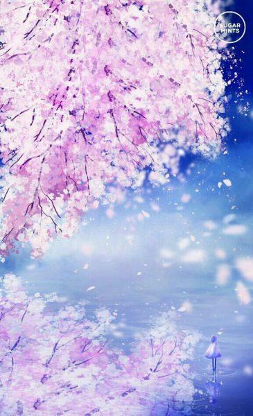 Hình nền hoa anh đào anime đẹp